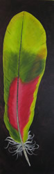 Kathy-Steere-Red-Green-Feather250